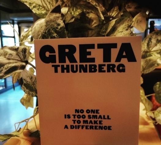 Greta Thunberg Book